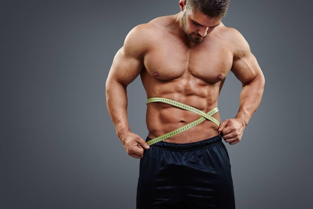 Ganancias de músculo según experiencia